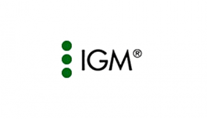 Online Marketing Referenz igm