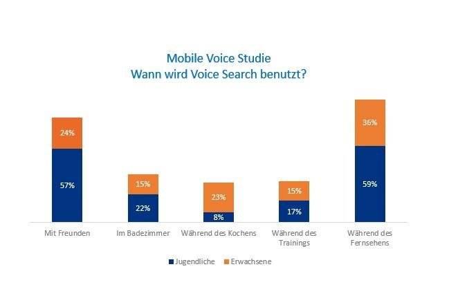Studie Nutzung Voice Search